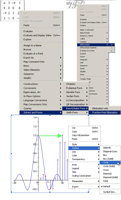 context sensitive menus maple features maplesoft rh maplesoft com Instruction Manual Book Manuals in PDF